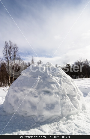 Igloo stock photo, Igloo detail image in a snowy landscape by Tyler Olson