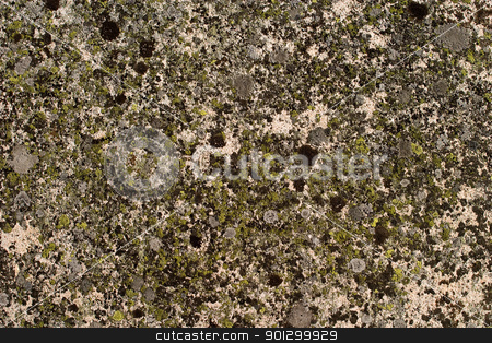 Rock Texture stock photo, A background rock moss texture by Tyler Olson