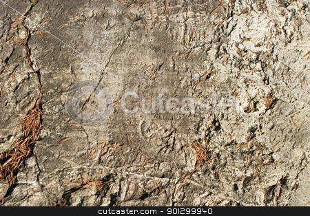 Rock Texture stock photo, A layerd rock background texture from oslo, norway. by Tyler Olson
