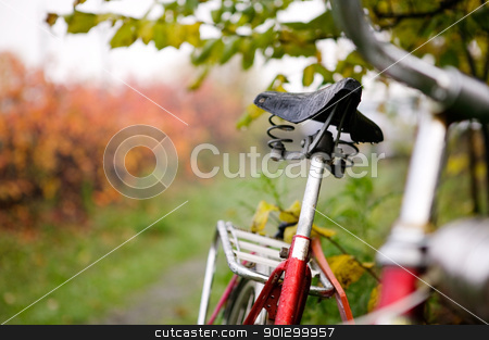 Retro Bike Detail stock photo, An old red bike detail with a shallow depth of field on a rainy fall day.  Focus on the seat. by Tyler Olson