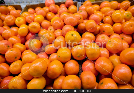 Bulk Oranges stock photo, Bulk Christmas Oranges in a grocery store. by Tyler Olson
