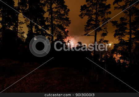 Forest Fireworks stock photo, Fireworks going off behind a grouping of trees. by Tyler Olson