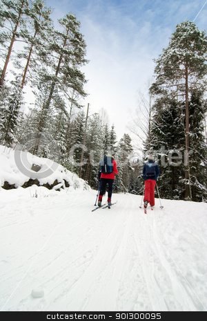 Cross Country Skiing stock photo, Cross country ski trails on a beautiful blue winters days. by Tyler Olson
