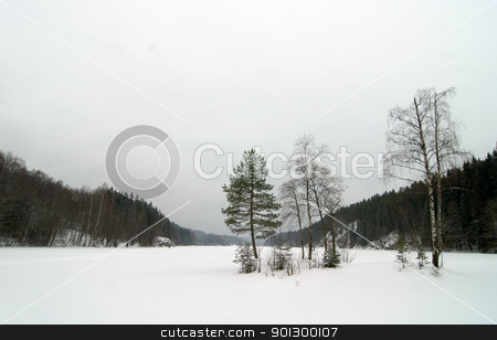 Norwegian Winter Lake Landscape stock photo, A lake near Oslo, Norway during the winter on a cloudy dismal depressing day. by Tyler Olson