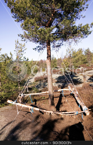 Homemade Swing stock photo, A homemade swing hanging from an evergreen pine tree. by Tyler Olson