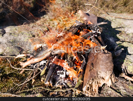 Daytime Camp Fire stock photo, A camp fire during the day with eager orange flames. by Tyler Olson