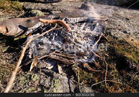 Wiener Roast stock photo, A wiener roast during the day over an open fire. by Tyler Olson