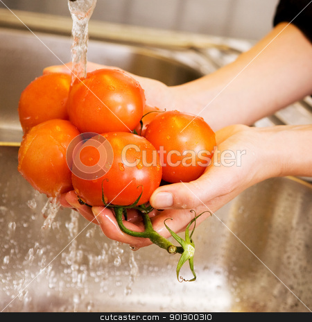 Washing Tomatoes stock photo, A detail image of washing tomatoes at home in the sink. by Tyler Olson