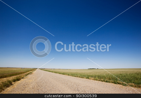 Prairie Gravel Road stock photo, A prairie gavel road stretching off into the distance with no end in site. by Tyler Olson
