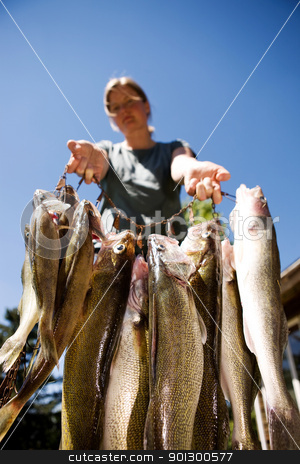 Proud Catch stock photo, A group of freshly caught fish being held up proudly by Tyler Olson