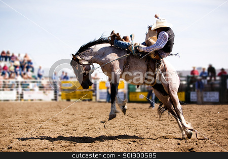 Rodeo Cowboy stock photo, A saddle bronc rider at a local rodeo by Tyler Olson