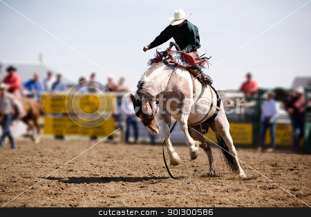 Saddle Bronc stock photo, A saddle bronc rider at a local rodeo by Tyler Olson