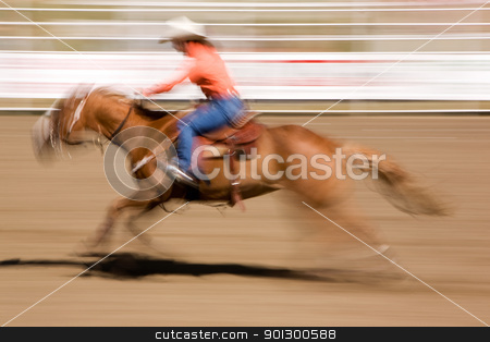 Galloping Horse with Cowgirl stock photo, A horse galloping fast with a female rider -  motion blur. by Tyler Olson