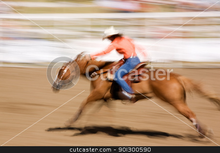Speeding Horse stock photo, A horse galloping fast with a female rider -  motion blur. by Tyler Olson