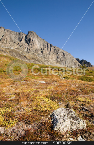 Norwegian Mountain Detail stock photo, A norwegian mountain detail with a rock in the foreground by Tyler Olson