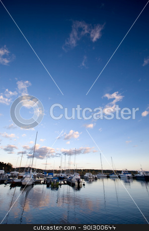 Sailboats stock photo, A dock with sailboats in the evening sun by Tyler Olson