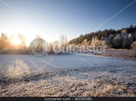 Winter Landscape stock photo, A winter ladscape with sun and frost by Tyler Olson
