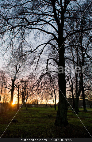 Sunset in Park stock photo, Fall sunset in park by Tyler Olson