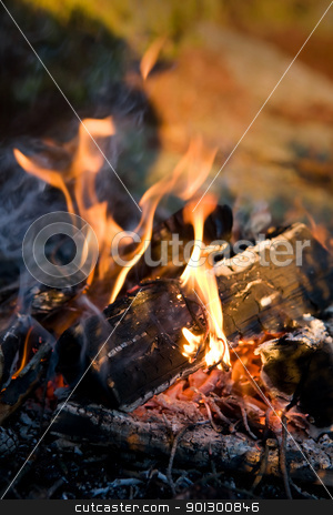 Campfire Detail stock photo, A close up image of a burning camp fire by Tyler Olson