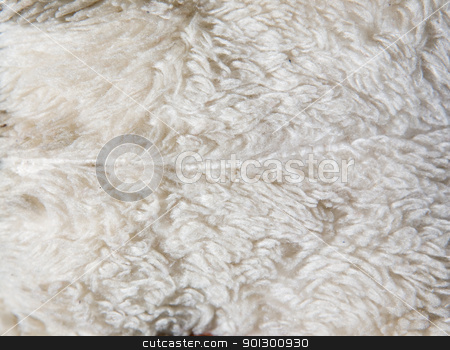Matted Fun Fur stock photo, Old fun fur background texture by Tyler Olson