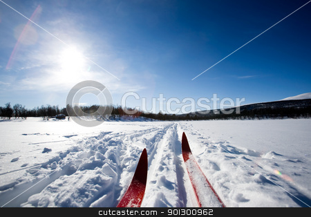 Cross Country Skiing stock photo, A cross country ski detail by Tyler Olson