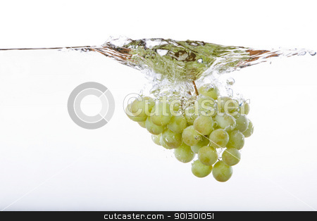 Grapes Splash stock photo, Grapes on the vine in water with splash by Tyler Olson