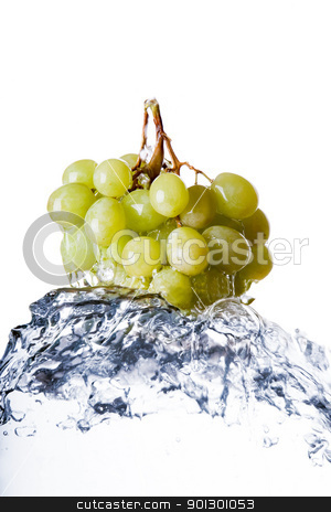 Grapes in Water stock photo, Grapes on the vine in water with splash by Tyler Olson