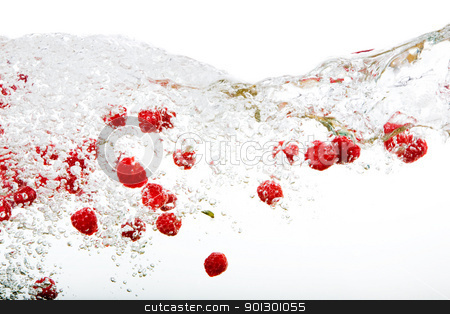 Raspberry Splash stock photo, Raspberries floating in water with bubbles and waves by Tyler Olson