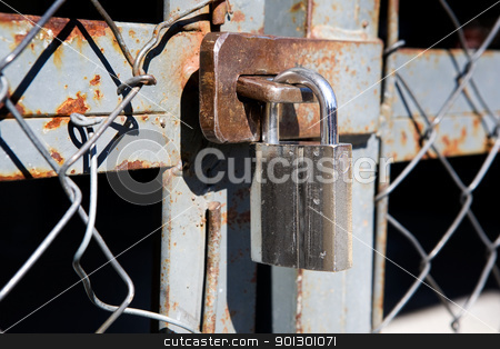 Large Padlock on Gate stock photo, A large padlock on a wire mesh gate by Tyler Olson