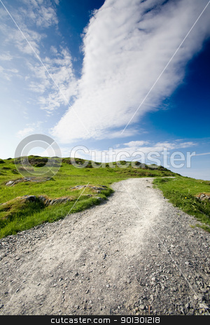 Nature Trail stock photo, A nature trail over a meadow with a dark blue sky by Tyler Olson