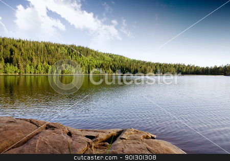 Quiet Lake stock photo, A quiet lake in a mountain forest landscape by Tyler Olson