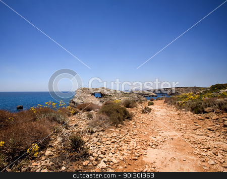 Path by Ocean stock photo, A dry dusty path on the island of Comino, Malta by Tyler Olson