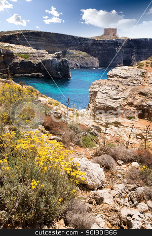 Malta Landscape stock photo, Comino island landscape with  by Tyler Olson