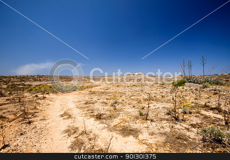 Desert stock photo, A very dry desert landscape, comino malta by Tyler Olson