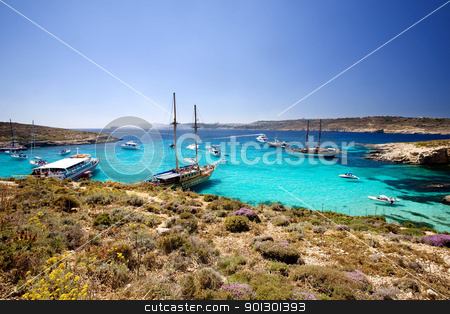 Blue Lagoon stock photo, The Blue Lagoon on Comino Island, Malta by Tyler Olson
