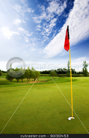 Golf Course stock photo, A very close hole in one by Tyler Olson