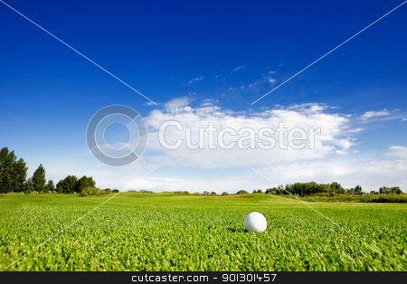 Golf stock photo, A golf ball on a fairway on a golf couse by Tyler Olson