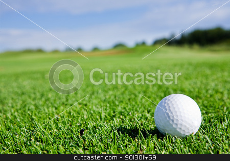 Golf Ball stock photo, A golf ball sitting on a fairway by Tyler Olson