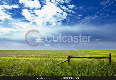 Prairie Landscape stock photo, A saskatchewan prairie landscape with blue sky and field by Tyler Olson
