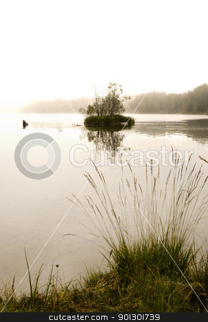 Fog on Lake stock photo, A quiet mysterious lake with fog by Tyler Olson
