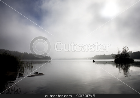 Lake Background stock photo, A peaceful lake with calm fog by Tyler Olson