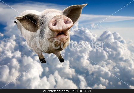 Flying Pig stock photo, A pig flying through the clouds in the sky by Tyler Olson