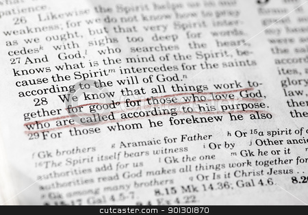 Romans 8:28 stock photo, Romans 8:28 - a popular verse in the New Testament by Tyler Olson