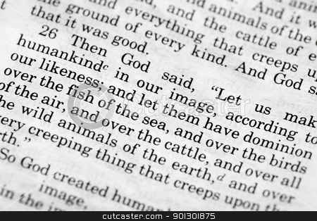 Genesis 1:26 stock photo, Genesis 1:26 - a popular verse in the Bible's Old Testament by Tyler Olson