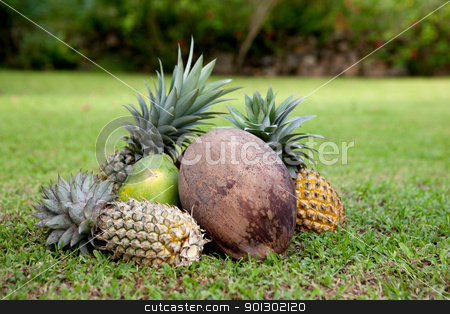 Tropical Fruit stock photo, Tropical fruit on green grass by Tyler Olson