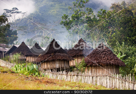 Traditional Mountain Village stock photo, A traditional mountain village in Papua, Indonesia. by Tyler Olson