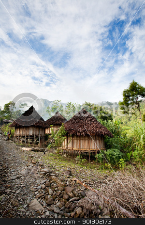 Traditional Village stock photo, A traditional mountain village in Papua, Indonesia. by Tyler Olson