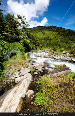 Mountain Stream stock photo, A rapid flowing stream in tropical mountains by Tyler Olson