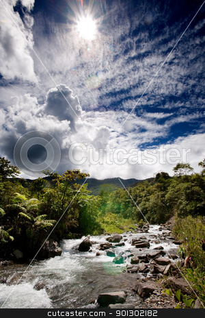 Fresh Mountain River stock photo, A rapid flowing stream in tropical mountains by Tyler Olson