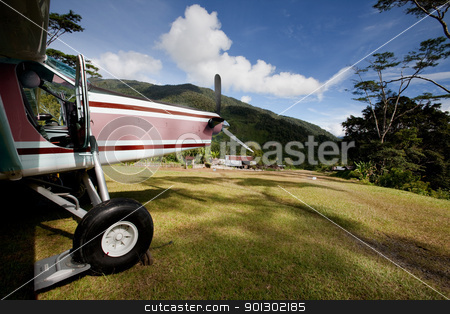 Airplane on Mountain Runway stock photo, A small airplane on a grass mountain runway by Tyler Olson